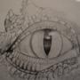 The Dragon's Eye by sciencefreako