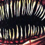 Needle Teeth Girl by linda-mota