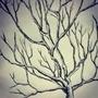 tree tree tree by LinDArtist