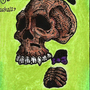 Mini skeleton 2 by dogmuth-behedog