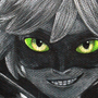 Chat Noir by ShofyLoops