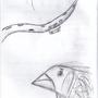 Tentacle Doodle Doo by TheFerridge