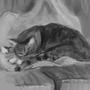 Sleepy Kitty by kittenbombs1