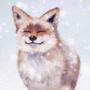 Snow Doge