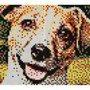 Doggie by AceAdasiak