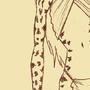 Cheetah Sketch by AuraV