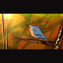 """Bird"" by LUCA-FATTORE"