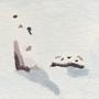 Ryōan-ji: Snow by LDAF