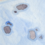 Ryōan-ji: Islands