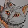 Ashencat by XantyLeger