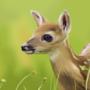Bambi by AnnasArt