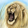 Lions Maine