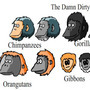 Apes by BluestoneTE