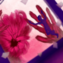 Bloom by Chevrium