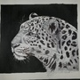 Leopard by Charis246
