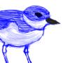 Small Bird Sketch by SynthSoda