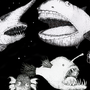 Deep sea acapella group by Rubbe