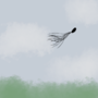 Sky by WSOfficial