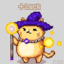 wizard cat i've summoned for a friend who's having a tough exam