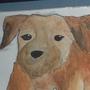 Leavers Dog by Aleaf01
