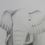 Elephant by Aleaf01