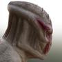 Torkanese Profile by Zombieapple224