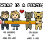What is a pencil? by NormaRC