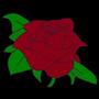 Rose by Malvakin