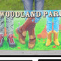 Woodland Park Colorado Boot board Collage