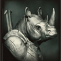 Rhino warrior