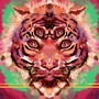 memetiger,lol by Skaalk