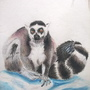 Lemur Watercolour
