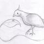 Birdy by aba1