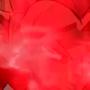 SSG Vegeta vs SSj Rose Black Preview by Animetion97