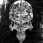 Cyber Skull by buriedantenna