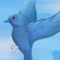 Internet IRL Entry - Real Twitter Bird