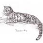 Big Kitty^^ by Koel-Art