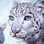 Snow Leopards by artfullyorange
