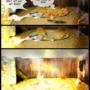 "Fallen World - Web Comic - Page 4 ""Nevermore"" by EpicSaveRoom"