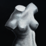 Obligatory Venus Painting