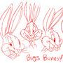 Bugs Bunny studies