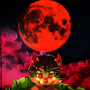 The super moon turn nate into a werecat!