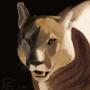 Puma study