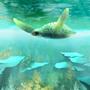 Sea Turtle by GavinWynford