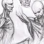 Anatomy Sketches by LegendofDelza