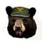 Colonel Bear