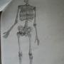 Skeleton Fullbody by LilioTheOne