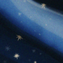 Mantle of Stars