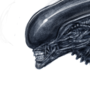Xeno brush test