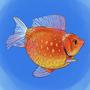 Fat Weird Goldfish
